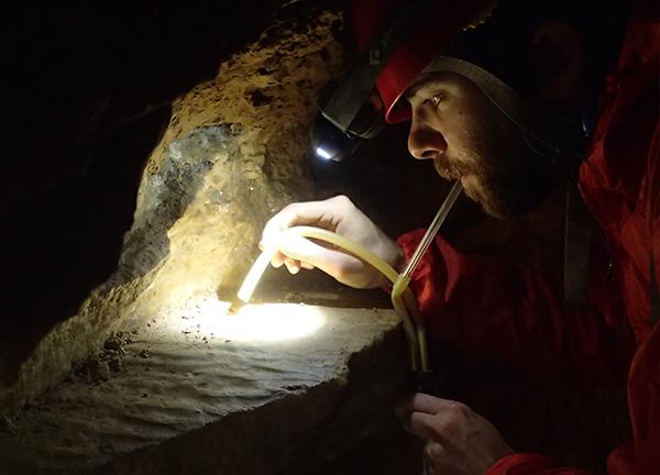 Grotte Comblain Etudes scientifiques Faune